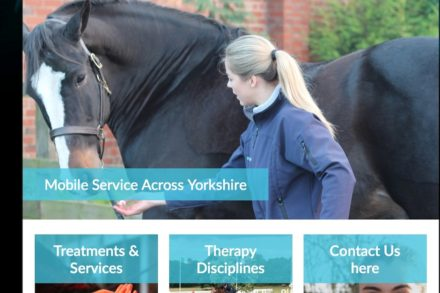 Equine Physio Services website