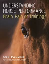 Physiotherapy chapter in new publication Brain, Pain or Training